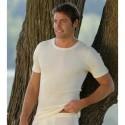 Tricot homme en coton Bio écru naturel